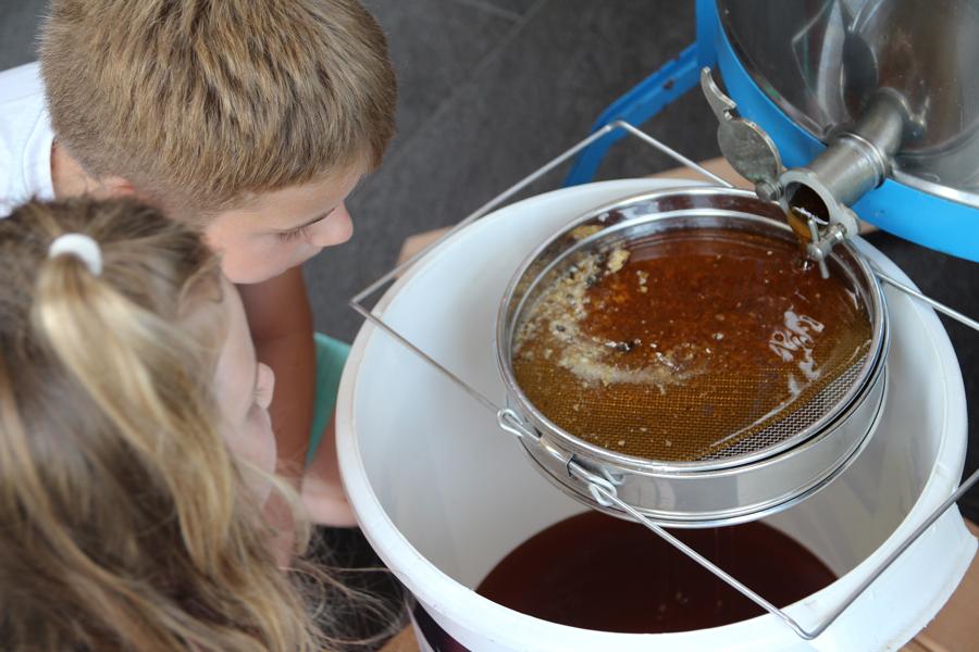 kinderen kijken naar de honing die gezeefd wordt