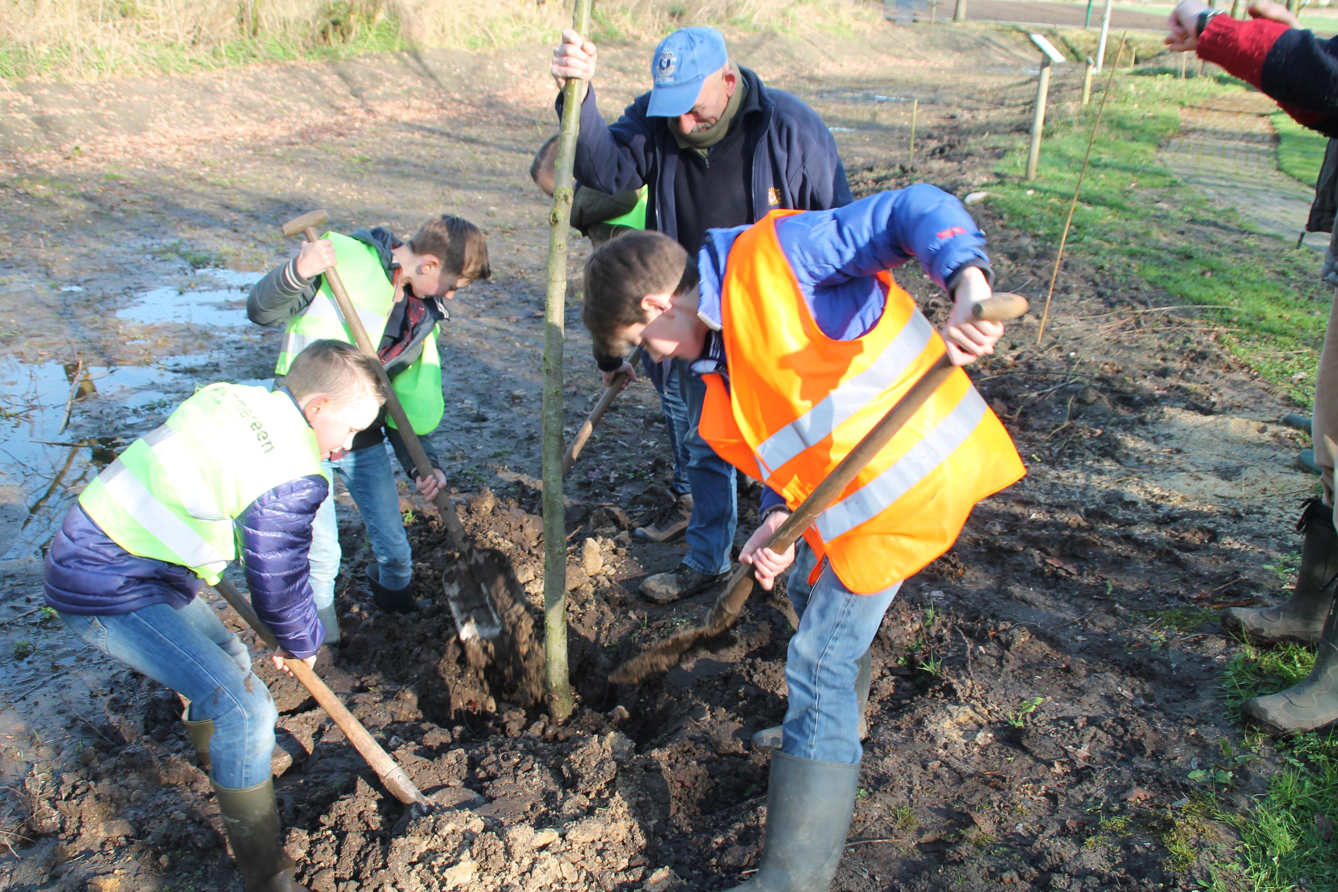 Kinderen planten bomen