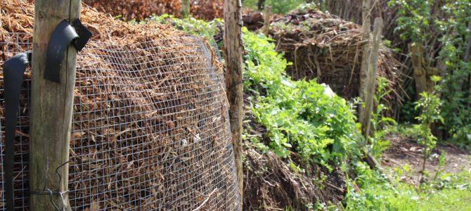 Gezonde grond in je tuin: neem een bodemmonster