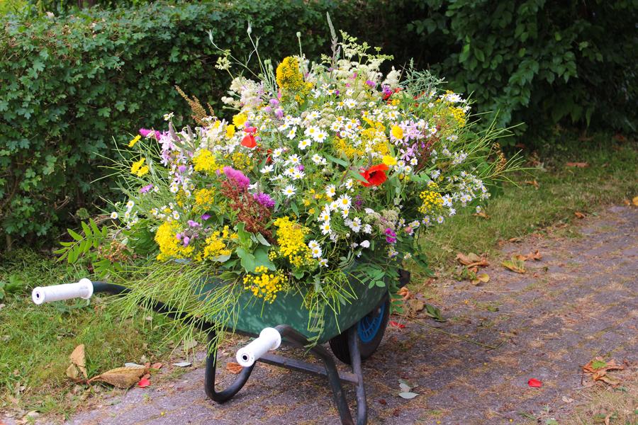 kruiwagen vol bloemen