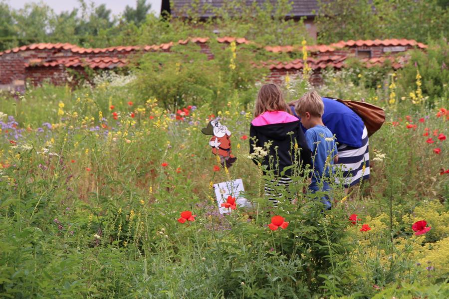 Kinderen bij een van de opdrachten in de wilde plantentuin
