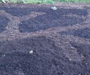 Voedt de bodem en de bodem voedt uw planten